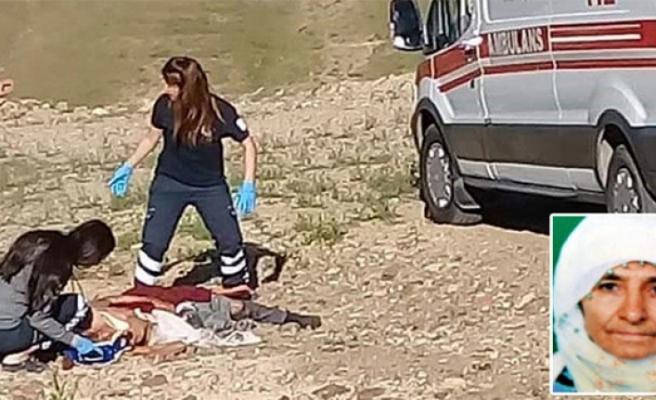 Sokak Köpeklerinin Saldırdığı Kadın Hayatını Kaybetti