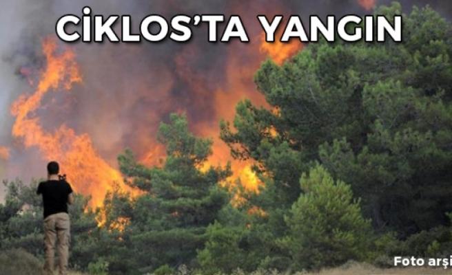 Ciklos'taki yangın tamamen kontrol altında