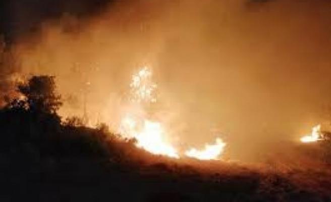 Güney Kıbrıs ormanları yandı kavruldu! Bir kişi tutuklandı