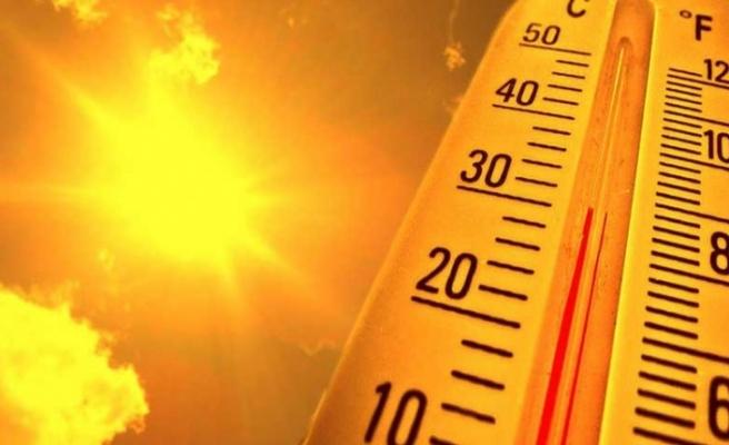 Güney Kıbrıs'ta orman yangını riski için kırmızı, hava sıcaklığı için de sarı alarm verdi!