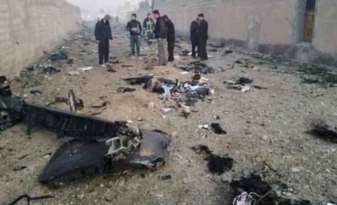İran'da yolcu uçağı düştü: 176 kişi hayatını kaybetti