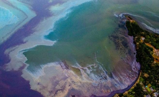 Mauritius'da petrol sızıntısı: Halk saçlarını bağışlıyor