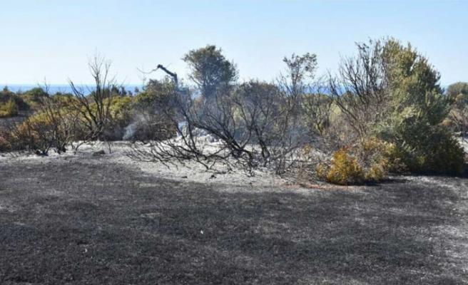 Tatlısu'daki yangına sebep olan şey 'mangal ateşi'