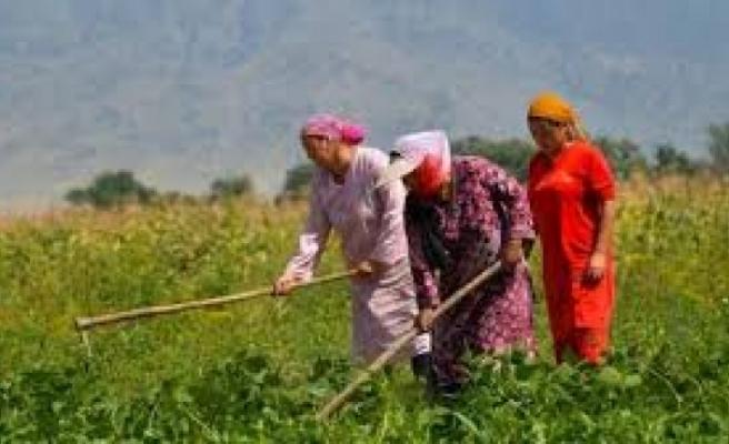 Kıbrıs Türk Çiftçiler Birliği Genel Başkanı Hüseyin Çavuş KELLE 15 Ekim Dünya Kadın Çiftçiler Günü dolayısıyla mesaj yayımladı.