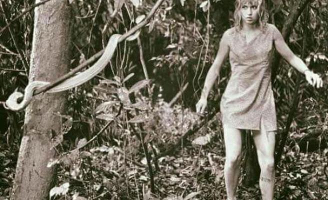 Herkesin Öldüğü Uçak Kazasından Kurtulup Amazon Ormanlarında 11 Gün Geçiren Kadının İnanılmaz Hikayesi