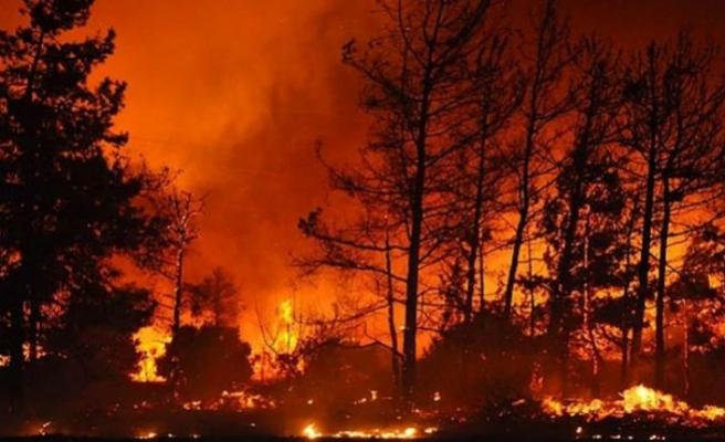 Meclis Araştırma Komitesi toplanıyor: Gündem 'orman yangınları'