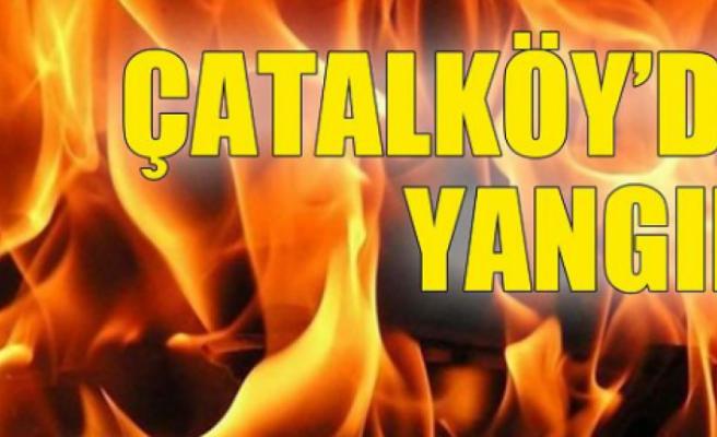 Çatalköy'de yangın çıktı