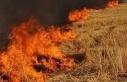 170 rulo balyanın yandığı yandığı yangının...