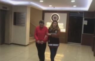 KKTC Merkezli İstanbul'da Taşıyıcı Anne...