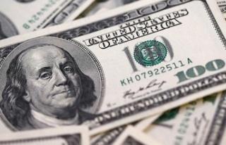 Merkez Bankası'nın faiz kararı sonrası dolar...