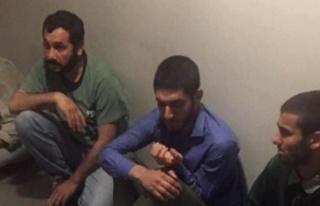 MİT'in Sincar'da yakaladığı 4 terörist...