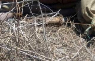 Yuvacık'ta patlamamış havan mermisi imha edildi