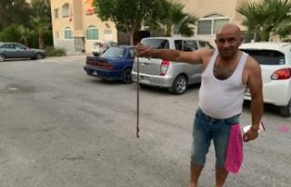 Metehan'ı yılanlar bastı