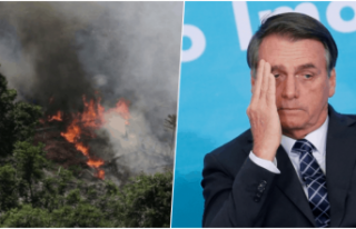 Amazonlarda rekor sayıda yangın: Devlet başkanı...