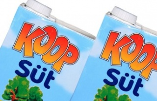 İhracatta artış iç piyasada sütü vurdu
