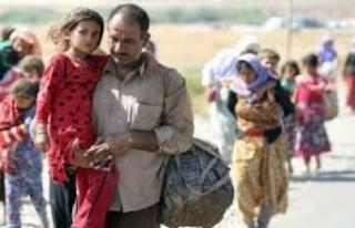 34 sığınmacıya 2 gün tutukluluk