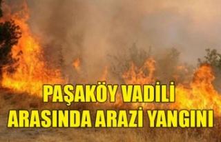 Paşaköy Vadili Arasında Arazi Yangını
