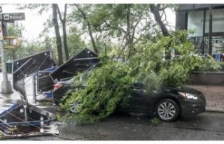 ABD'de tropikal fırtınaya dönüşen Isaias Kasırgası...