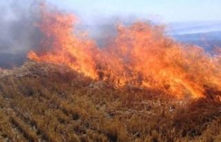 İzinsiz ve tedbirsiz ateş yaktı, kuru otlar ve...