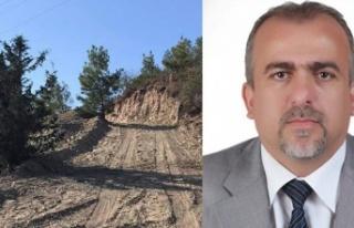 """Orman Dairesi Müdürü Karzaoğlu: """"Ağaç kesimi..."""