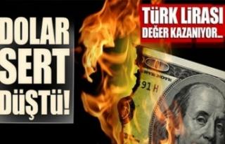 Dolar/TL Ağbal'ın açıklamaları sonrası...