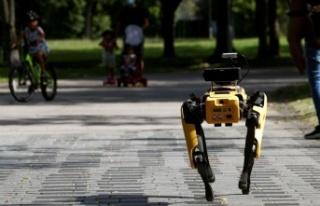 Robot Köpekler Yeni Yılda Göreve Başlıyor