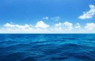 Denizde kaybolan 70 yaşında ki kadın aranıyor