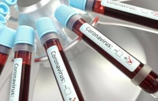 Koronavirüs Kısıtlamalarını Gevşetme Kararı...