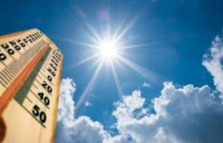 Araştırma: Sıcak hava ve uzun süreli güneş ışığı...