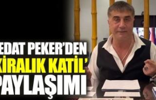 Sedat Peker'den 'kiralık katil' paylaşımı