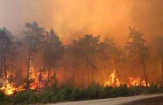 3 ilde 8 noktada yangınlar sürüyor