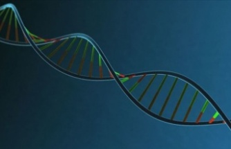 İnsan DNA'sının müziği notalara döküldü