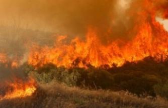Baf'ta yangın kontrol altına alınamıyor