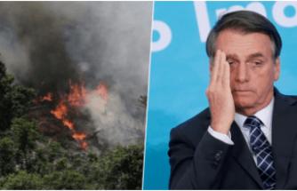 Amazonlarda rekor sayıda yangın: Devlet başkanı 'STK'lar yakıyor' dedi