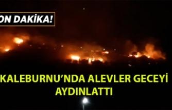 Kaleburnu'nun Batısında Yangın Çıktı