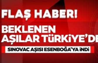 Çin'den sipariş edilen Covid-19 aşıları Türkiye'ye geldi