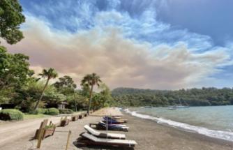 Orman yangınları yayılıyor: Marmaris ve Milas'ta ormanlık alanda yangın çıktı