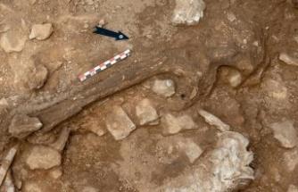 İspanya'da 14 bin yıl önce yaşayan bir kadının iskeleti bulundu