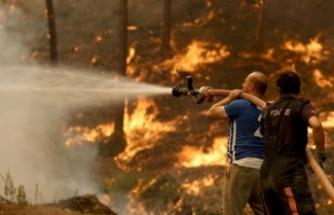 Türkiye'de alevlerle mücadele 4 ilde sürüyor