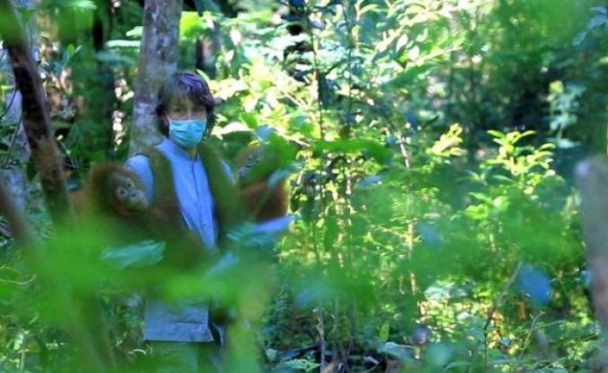 Koronavirüs son salgın olmayacak': Bilim insanları vahşi yaşamdaki hastalıklara daha yakından bakılmasını istiyor