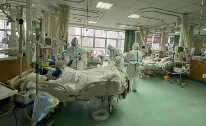 Dünya tetikte... Çin'de ölü sayısı her geçen artıyor